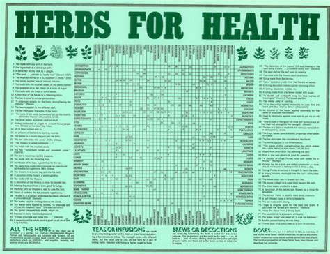herbs chart herbs for health chart rolled in tube all rare herbs