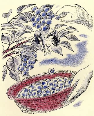 Bantal Leher Printing Blue Berry Yl nothing in the house the blueberry pie
