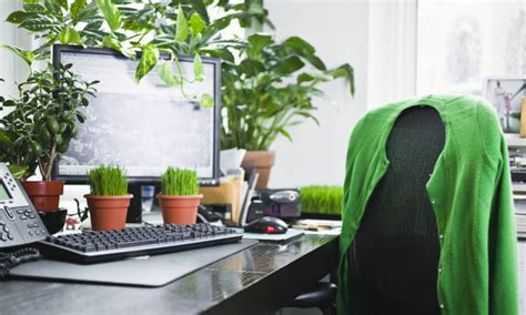 Your Office Greener Hippyshopper by 5 Ways To Brighten Up Your Office