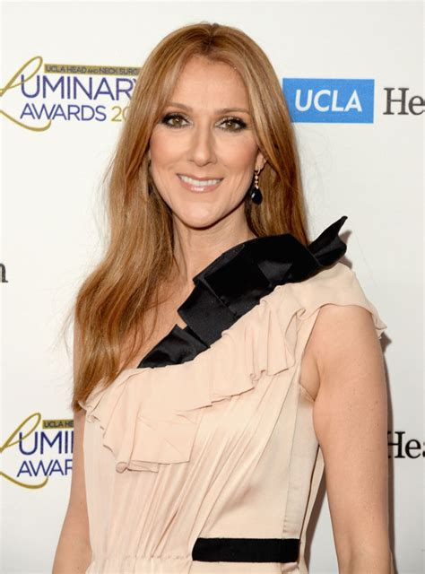biography of celine dion wikipedia image gallery saleen dion