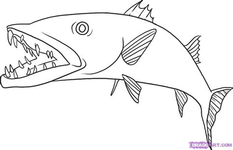 barracuda fish coloring page how to draw a barracuda step 6 art drawing tutorial