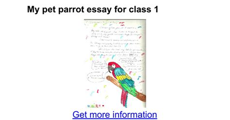 Essay On My For Class 1 by My Pet Parrot Essay For Class 1 Docs
