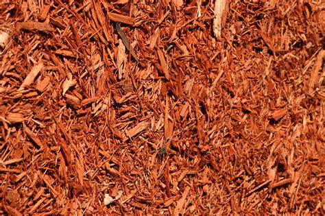 red colored designer mulch atlantic mulch