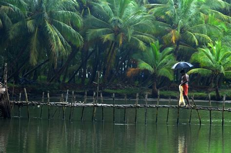 wallpaper for walls kerala 30 kerala images that will make you want to visit kerala