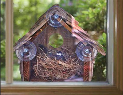 window bird houses log bird houses bird cages