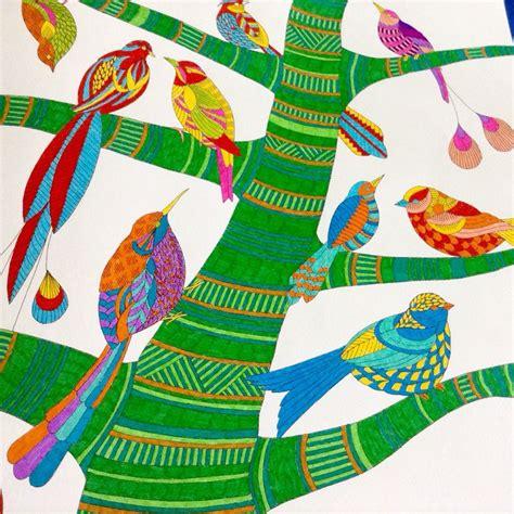 millie marottas tropical wonderland 184994346x 17 best images about millie marotta coloring on coloring moth and animal kingdom