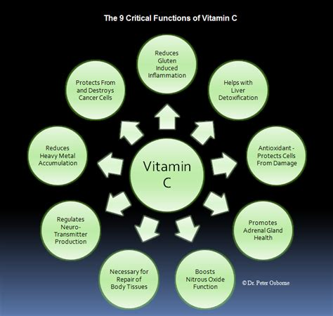 Vitamin C Nicotine Detox by Vitamin C The Vitamin That Regenerates And