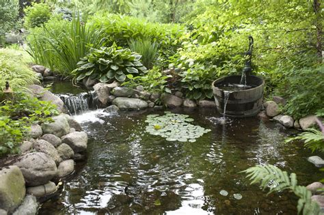 aquascape ecosystem aquascape your landscape designing your dream pond