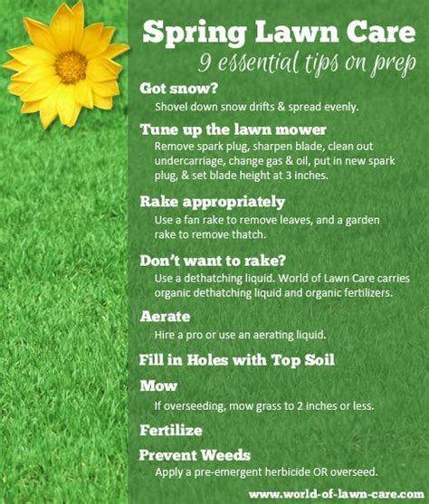 spring landscaping tips 17 best images about lawn on pinterest the secret