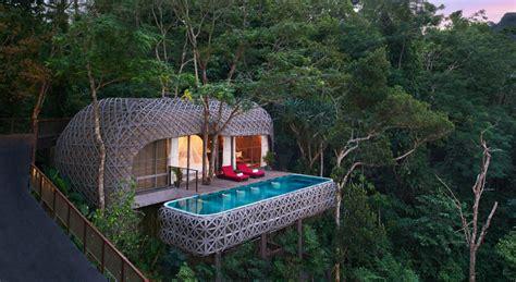 casa arbol hotel las 20 mejores casas en 193 rboles mundo ideas