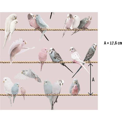Rouleau De Papier 3268 by Papier Peint Oiseaux Les Ins 233 Parables Sur Fil P 226 Le