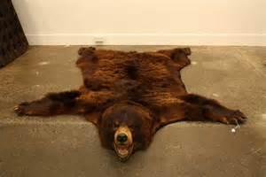 17 best ideas about bear skin rug on pinterest bear rug