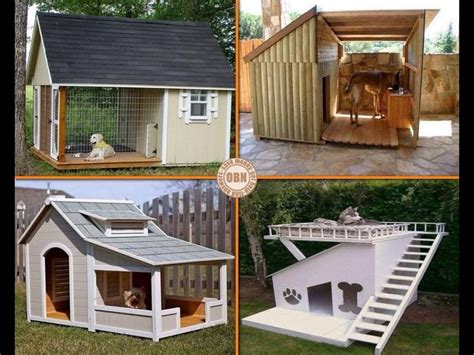 lowes build a dog house how to build a dog house dog breeds picture