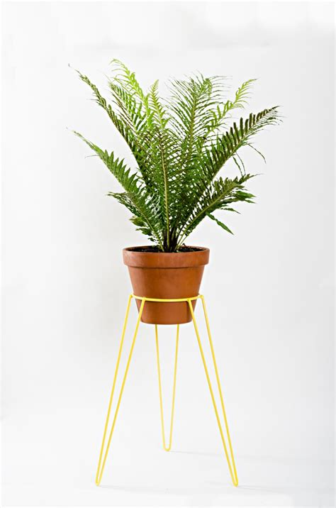 Garden Planter Stands by The 10 Best Standing Planter Options For Your Interior