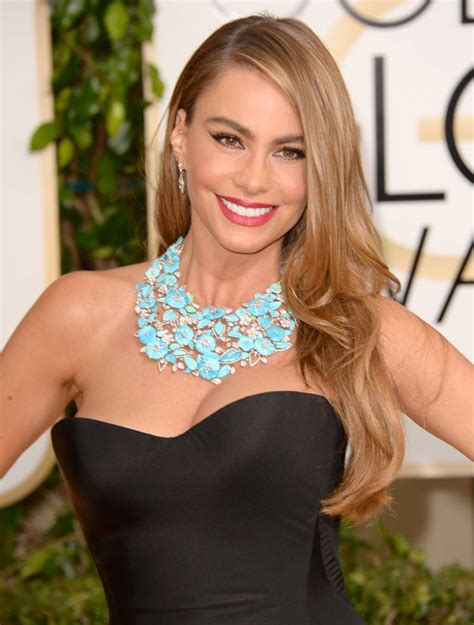 Sofia Blueblack see sofia vergara s dress at the 2014 golden globes