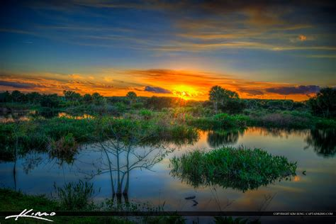 sunset bay sanctuary a sunset bay novel books peaceful waters sanctuary wellington florida wetlands