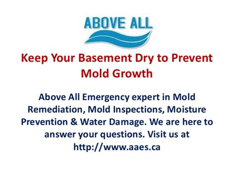 keep your basement to prevent mold growth