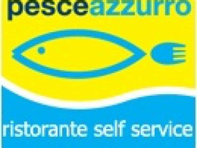 ufficio per l impiego senigallia il pesceazzurro e solidale a fianco di senigallia