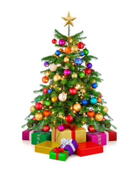 endlich weihnachten ohne stress dr bettina fromm