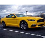 Ford Mustang Muscle Cars  Wwwgalleryhipcom The Hippest Pics