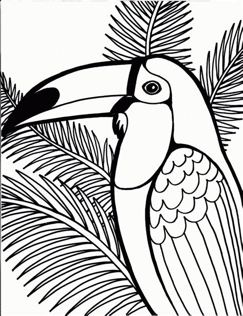 coloring pages photo bird colouring pages images bird
