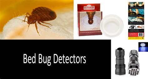 bed bug detectors how to detect bed bugs best bed bug detectors review