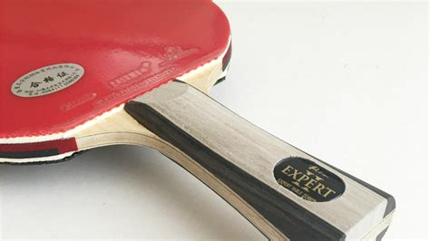 palio expert 2 table tennis racket review