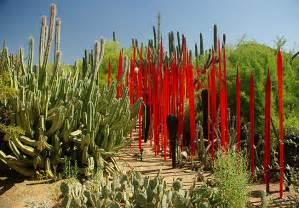 Desert Botanical Gardens Az Desert Botanical Garden