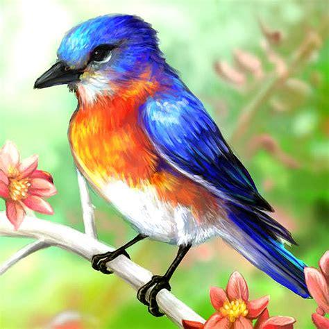 birds painting 15 beautiful bird paintings freecreatives