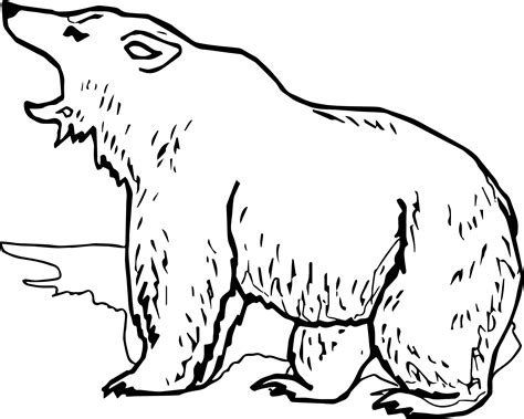 Grizzly Bear Yell Coloring Page Coloring Page Of Grizzly Grizzly Coloring Page