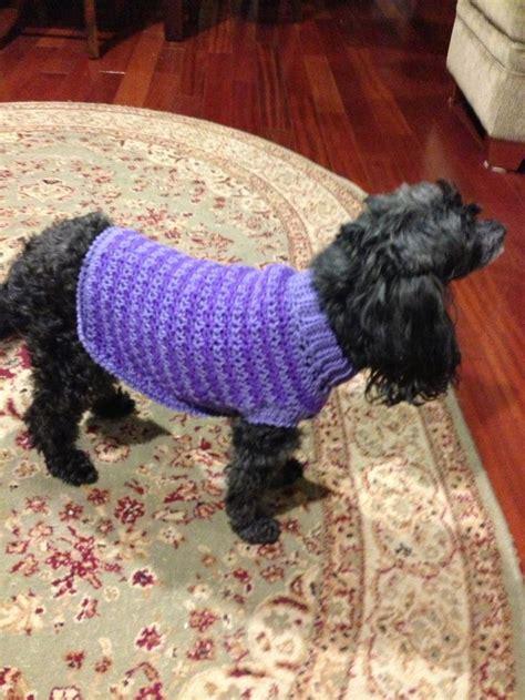 free crochet pattern for dog coats doggie sweater red heart free pattern i love crochet