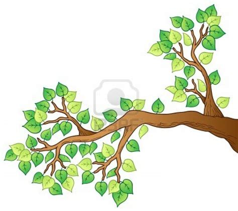 comic tree how to draw a tree with branches images