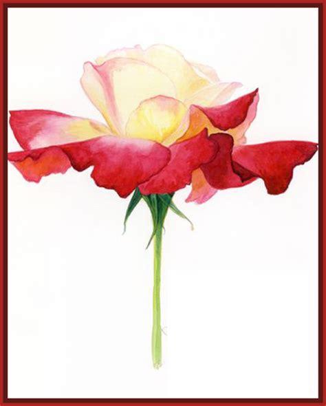imagenes chidas rosas incre 237 bles imagenes de rosas para dibujar chidas