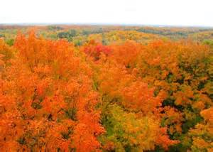 fall colors in wisconsin wisconsin fall foliage photos autumn colors images in