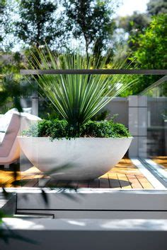 1000 images about favorite pots planters and vases on