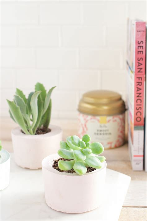 diy succulent diy succulent pots say yes