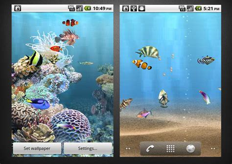 anipet koi live wallpaper full version free download download anipet koi premium hd live wallpaper free for