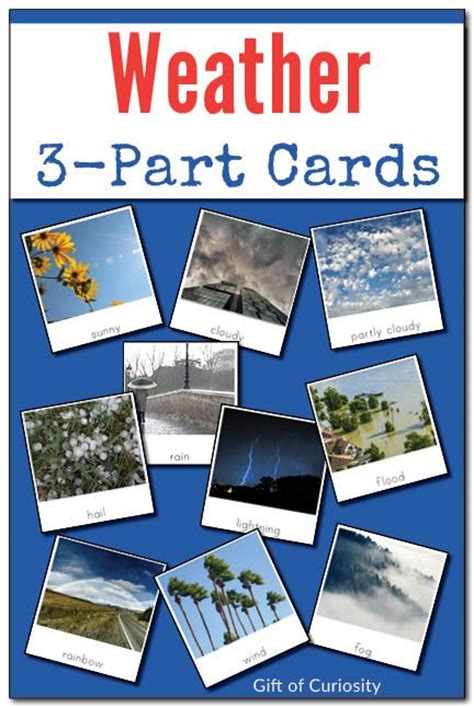 Montessori 3 Part Cards Template by The World S Catalog Of Ideas