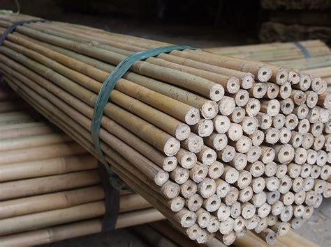 stuoia bamboo rosa pietro e figli bambu curiosit 224 e prodotti in bamboo