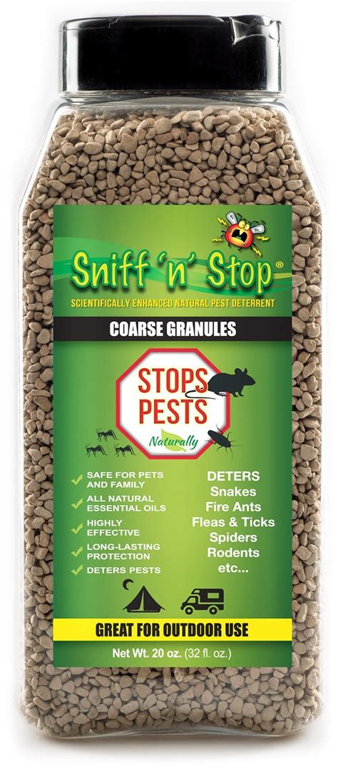 how to get rid of ants in the house naturally and easy