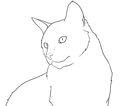cat lines cat pictures to draw az coloring pages