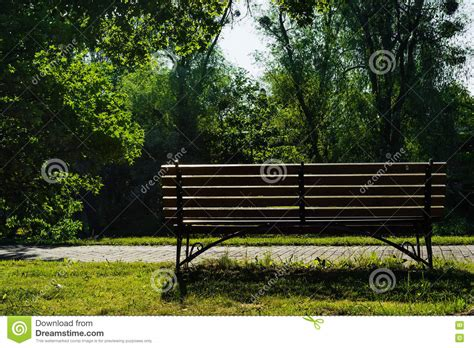 a bench in the park bench in summer park in the morning stock photo image 73296764