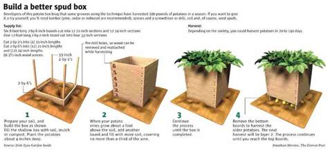 how to build the best potato box ever mental scoop