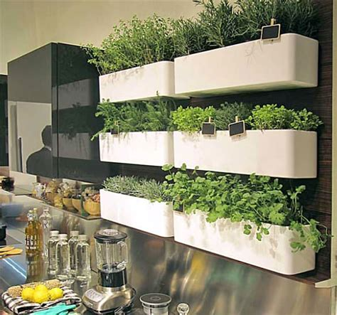 houses organic  indoor herb garden