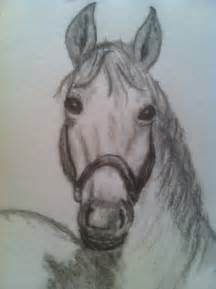 horse head front drawing