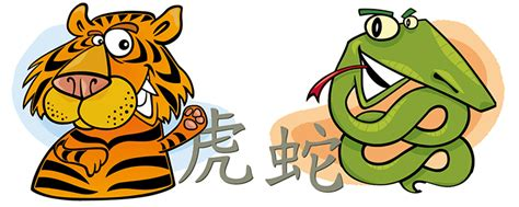 tiger and snake compatibility