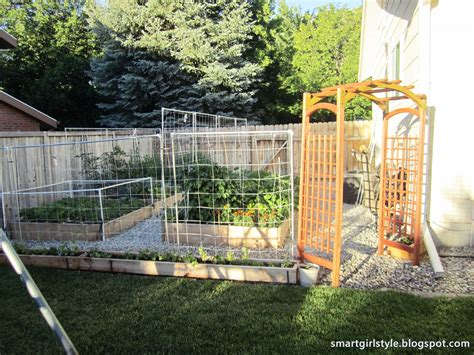 box vegetable garden smartgirlstyle box vegetable garden june update