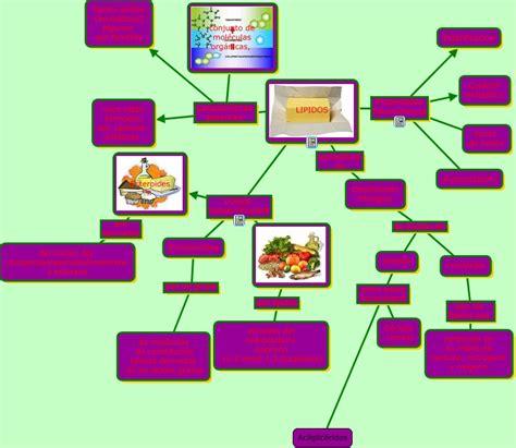 cadenas alifaticas que son lipidos 191 que son los lipidos