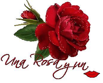 imágenes de rosas que brillen rosas rojas con movimiento y brillo para google plus