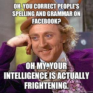 Correct Grammar Meme - oh you correct people s spelling and grammar on facebook